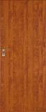Drzwi DRE  Standard 10