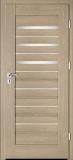 Drzwi Intenso Doors Lion Steel W-4