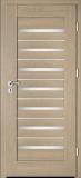 Drzwi Intenso Doors Lion Steel W-5