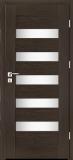 Drzwi Intenso Doors Paris W-5